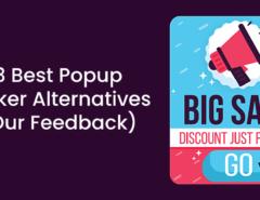 3 Best Popup Maker Alternatives (Our Feedback)